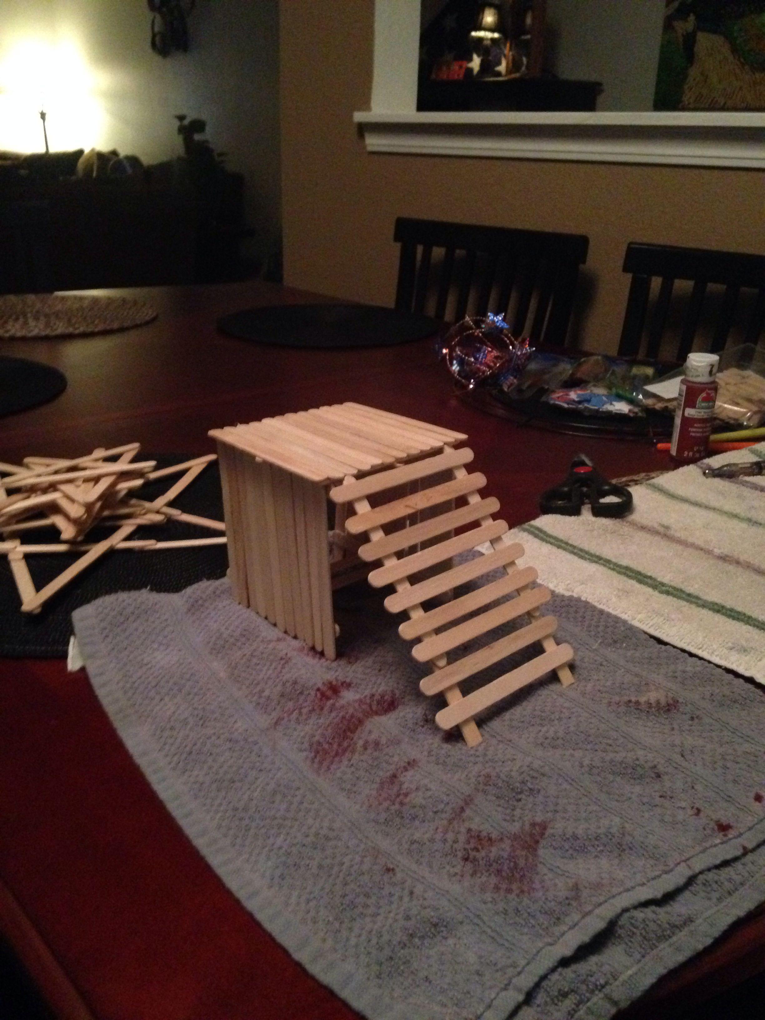 A homemade dwarf hamster platform. Hamster toys, Hamster
