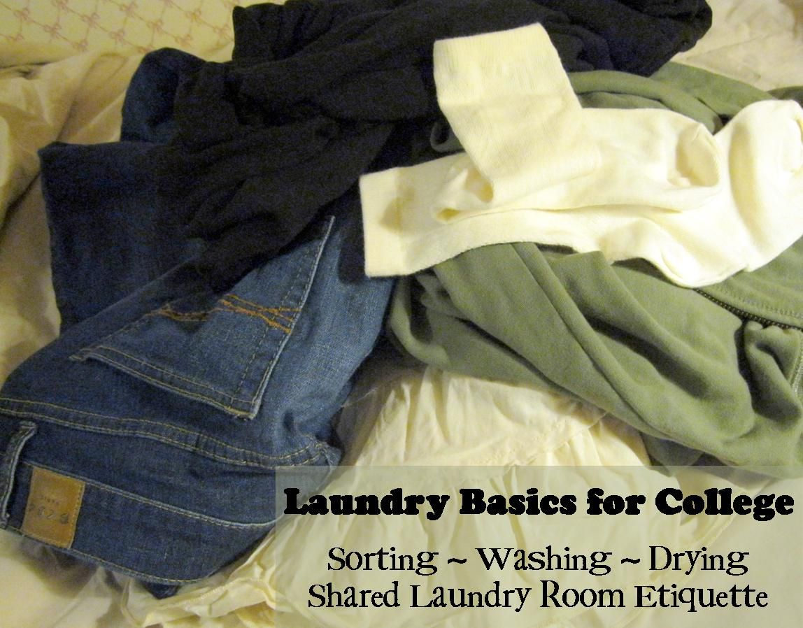 Laundry 101 For College Students Laundry Room Clothing Care Basic