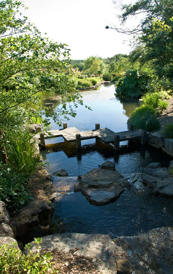 Ways With Water - Acres Wild