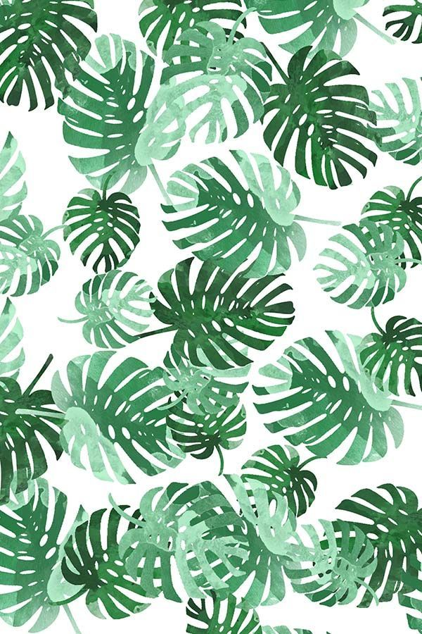 Colorful Fabrics Digitally Printed By Spoonflower Palm Springs Palm Leaf Wallpaper Leaf Wallpaper Tropical Leaves