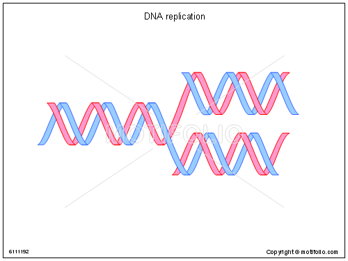 Dna Double Helix Pattern Dna Pinterest Dna Double Helix And