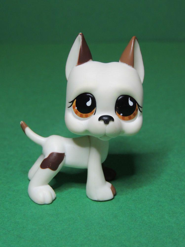 750 chien dogue white great dane dog brown eyes lps - Chien pet shop ...