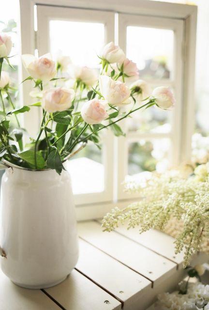 pink roses @M