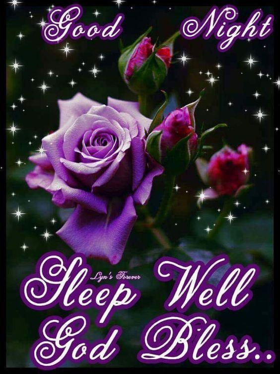 Goodnight Sleep Well God Bless rose good night good evening night quotes