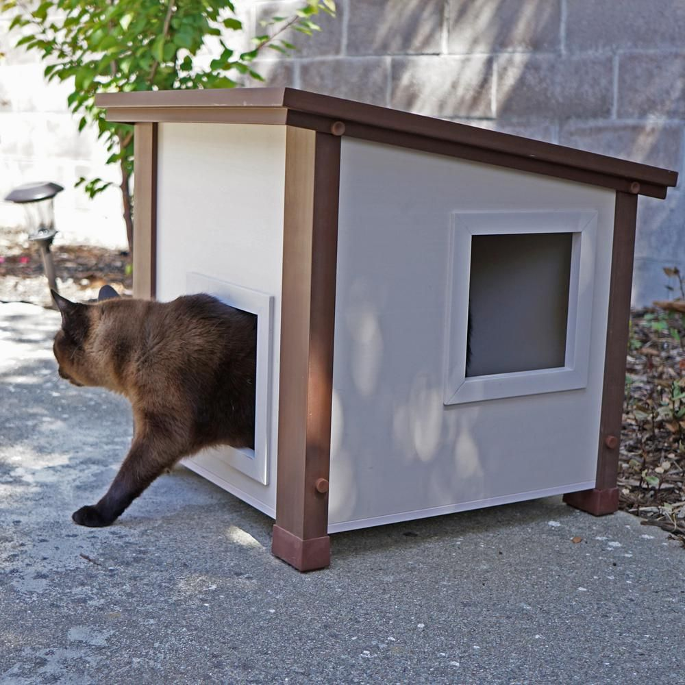 Pin On Outdoor Cat House