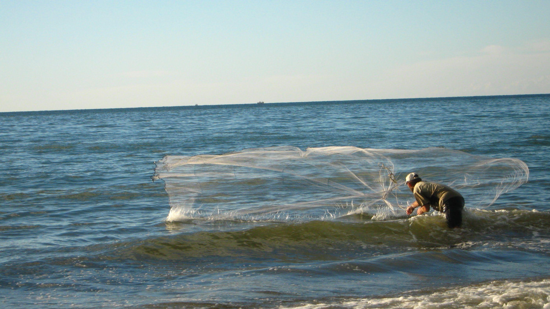 نتيجة بحث الصور عن صيد السمك بالشبك Fish