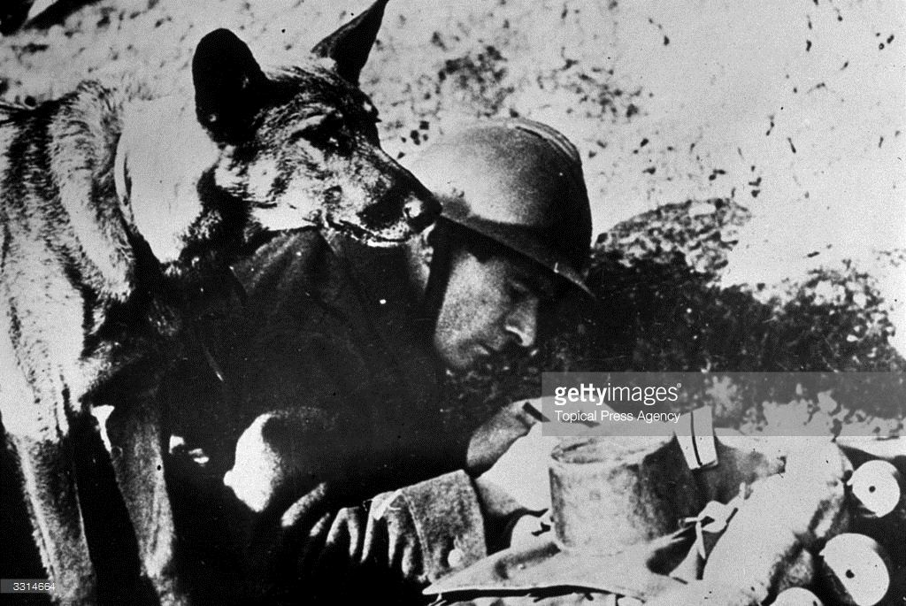 A French officer writing a message while a dog stands by ready to deliver it…