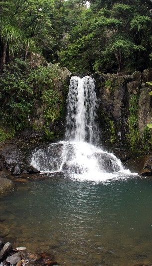 Waiau Falls - Coromandel, NZ