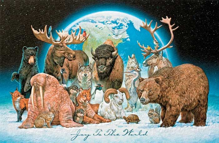 The Humane Society Of The United States Store Animals Humane Society Wildlife Christmas Cards