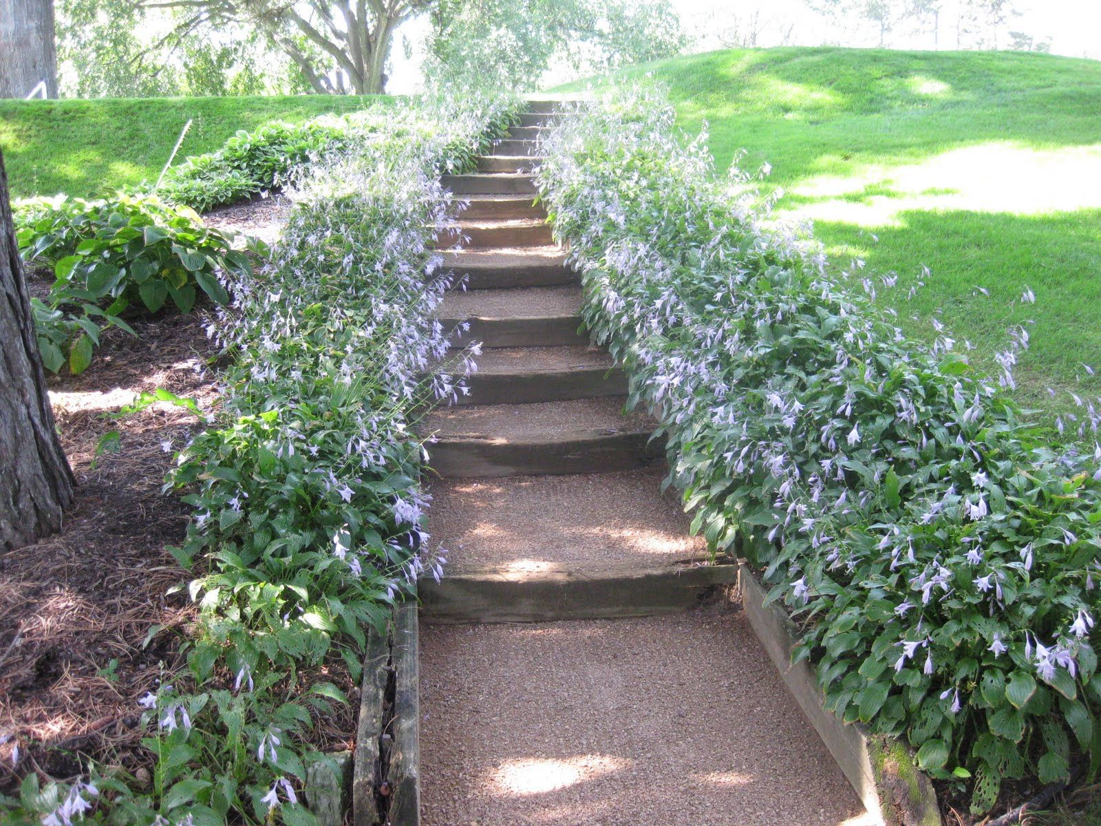 Best The Old Timber Edging Timber Steps And Pillsbury Stone 400 x 300