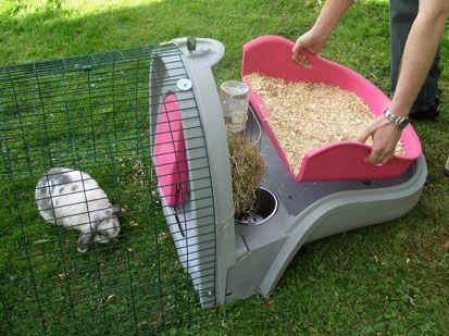 take the tray out to change your rabbits bedding | needs it