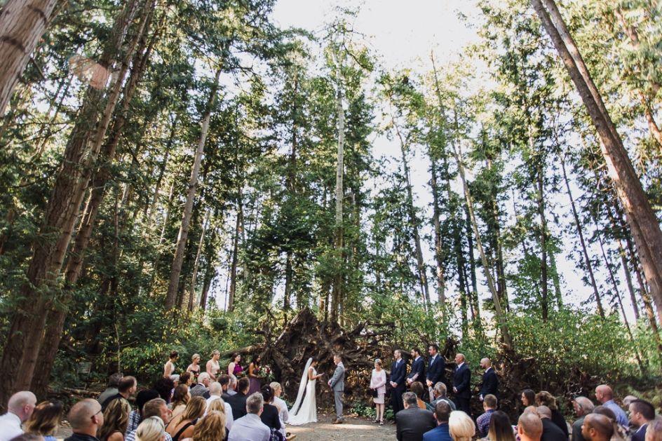 Sea Cider Farm Wedding Farm wedding, Forest wedding