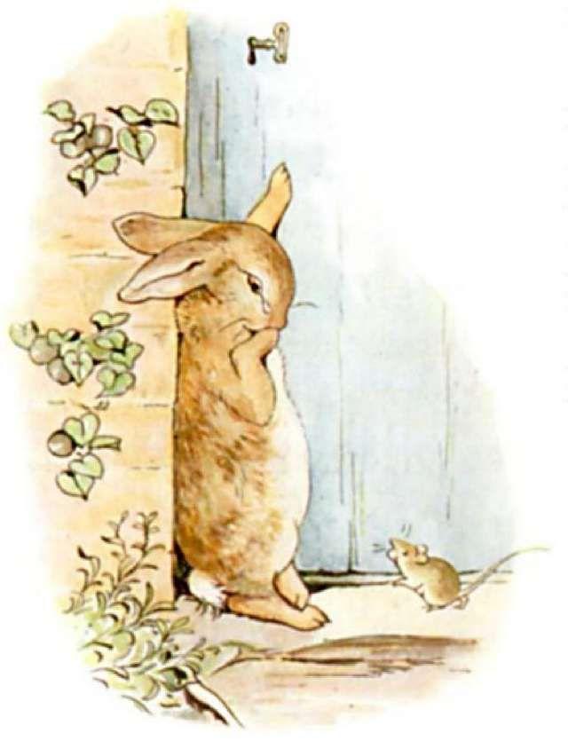 Peter Rabbit Characters   Beatrix Potter: Peter Rabbit