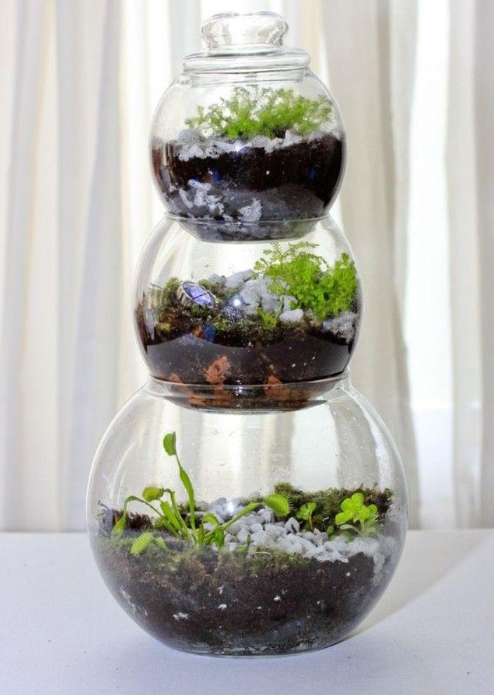 Unique Closed Glass Terrarium Ideas For Plant Fairy Garden