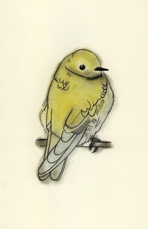 Sweet Yellow Bird Jpg 570 878 Yellow Bird Tattoo Bird Drawings Watercolor Bird