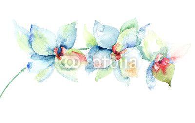 Quadro Orchids flowers #stampasutela#stampasu#tela #regalaunquadro#venditaquadri #stampaquadrisu #plexiglassi #panello#bordato#panellobordato #quadri per#salotto Codice art:  52856807