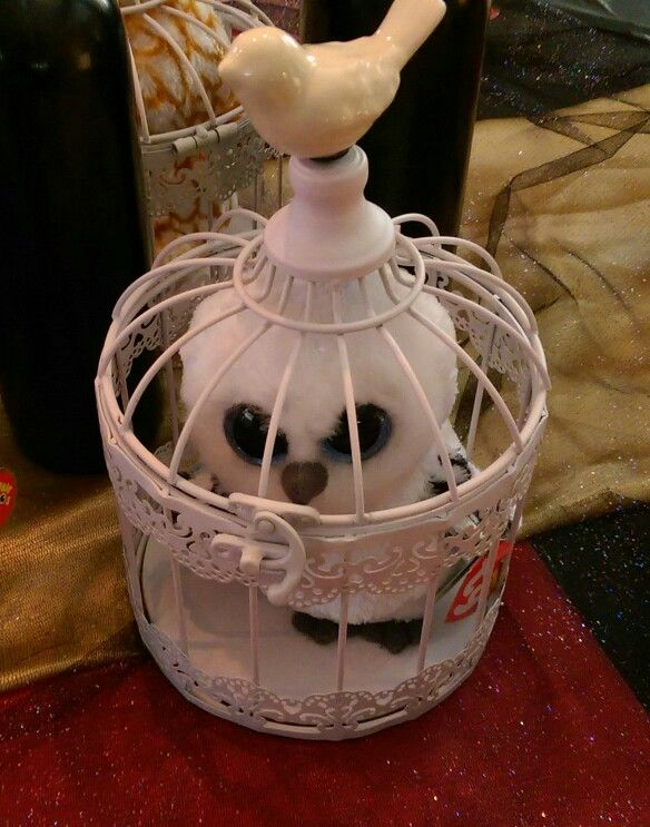 Harry Potter Beanie Boo Owl with cage.  97b41342a840