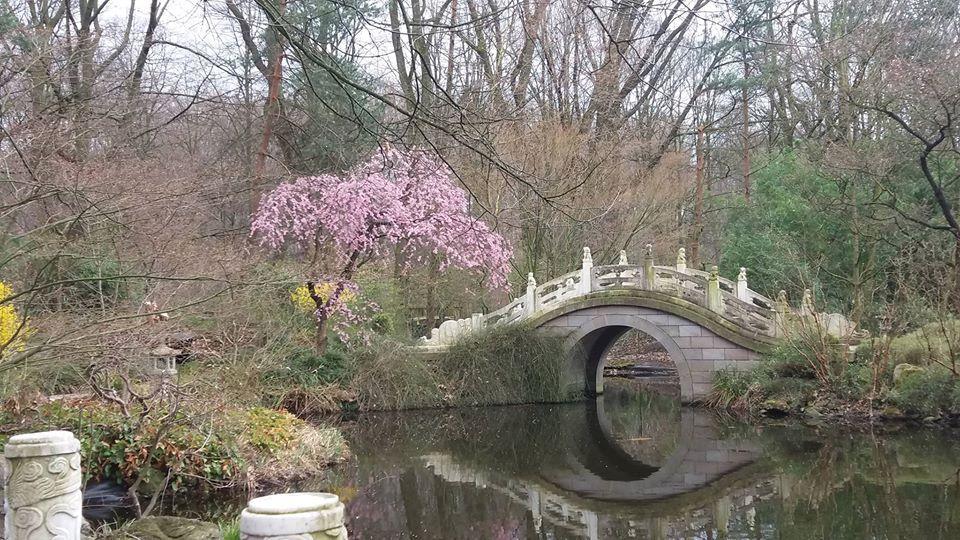 Chinesischer Garten Im Zoo Duisburg Zoo Duisburg Zoo Duisburg