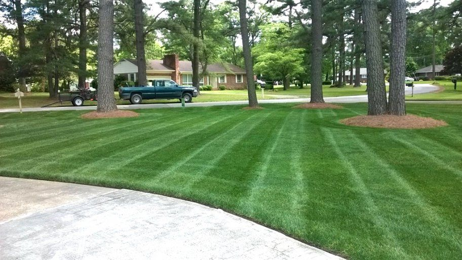 Spring Lawn Care And Landscaping Tips With Images Spring Lawn Care Lawn Care Tips Lawn Care