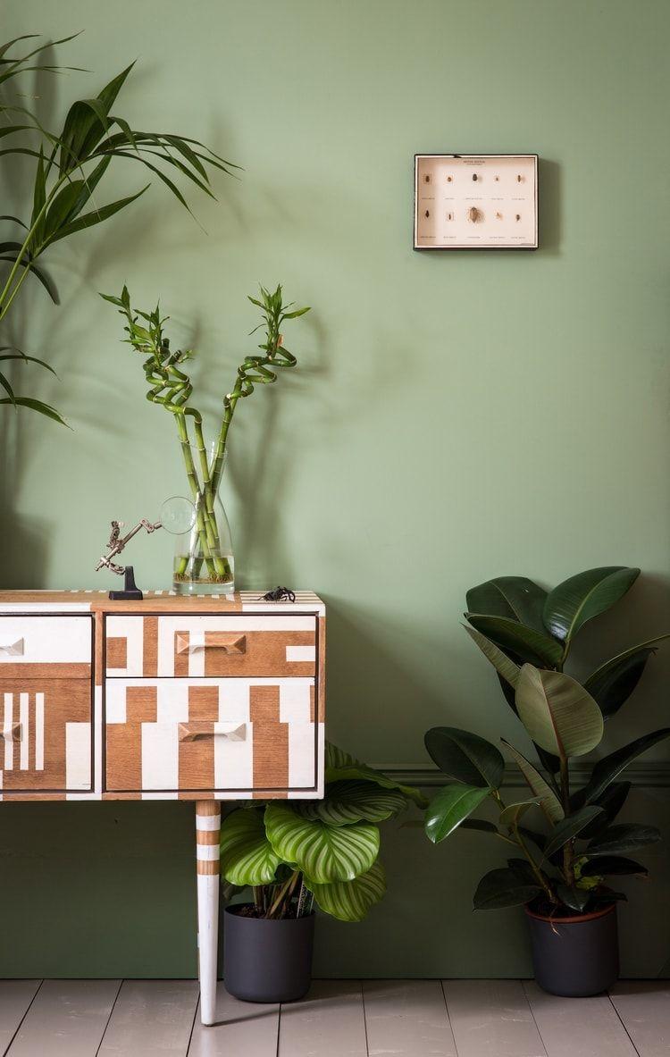 La peinture vert amande | appart: revêtement sol, mur, peintures ...