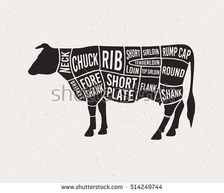 Meat Cuts Diagrams For Butcher Shop Scheme Of Beef Animal