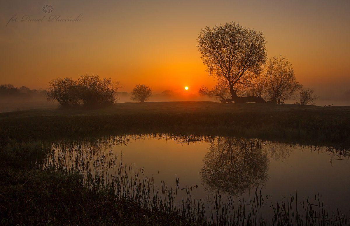 Pin By Leroy Van Mudh On Crapo Maryland Landscape Landscape Photography Nature