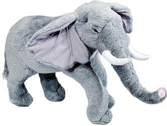 1eac5f56b A stuffed elephant--Lily s comfort object.