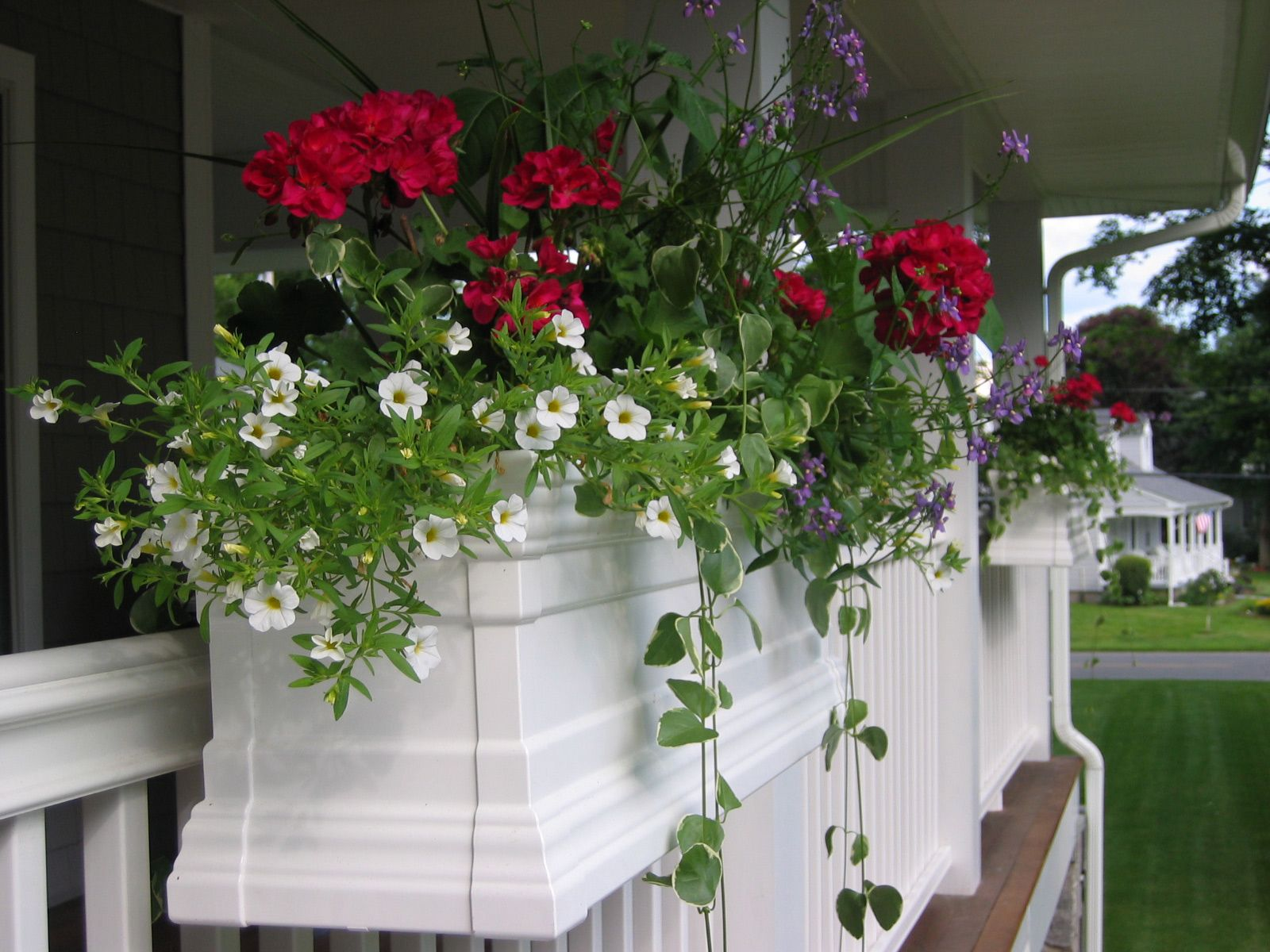 Early Spring Flowers And Window Planters That You Will Love Early