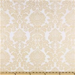 I finally figured out what my favorite print is called. DAMASK! Wow... I'm smart. Thank you fabric.com