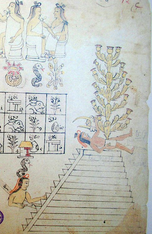 The head of Huitzilopochtli, in his guise as a humming-bird, perches victorious over the corpse of Copil, out of whose body a cactus grows: detail from Codex Azcatitlan f.12v