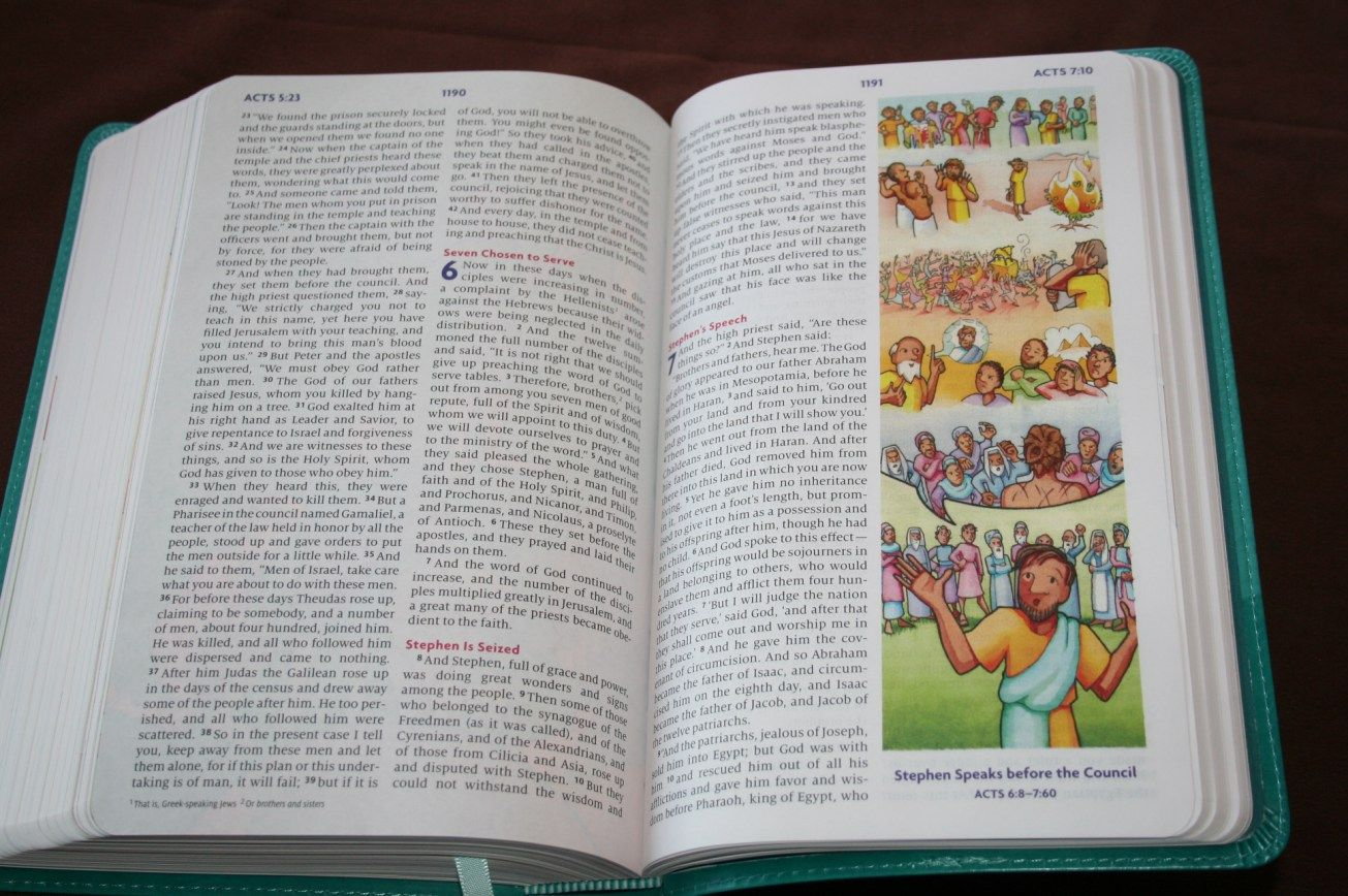 ESV Big Picture Bible (13) Big picture, Bible, Journal