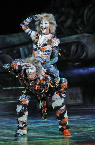 Celebrate Over 35 Years Of Jellicle Cats On Broadway Jellicle Cats Broadway Playbills Cats Musical