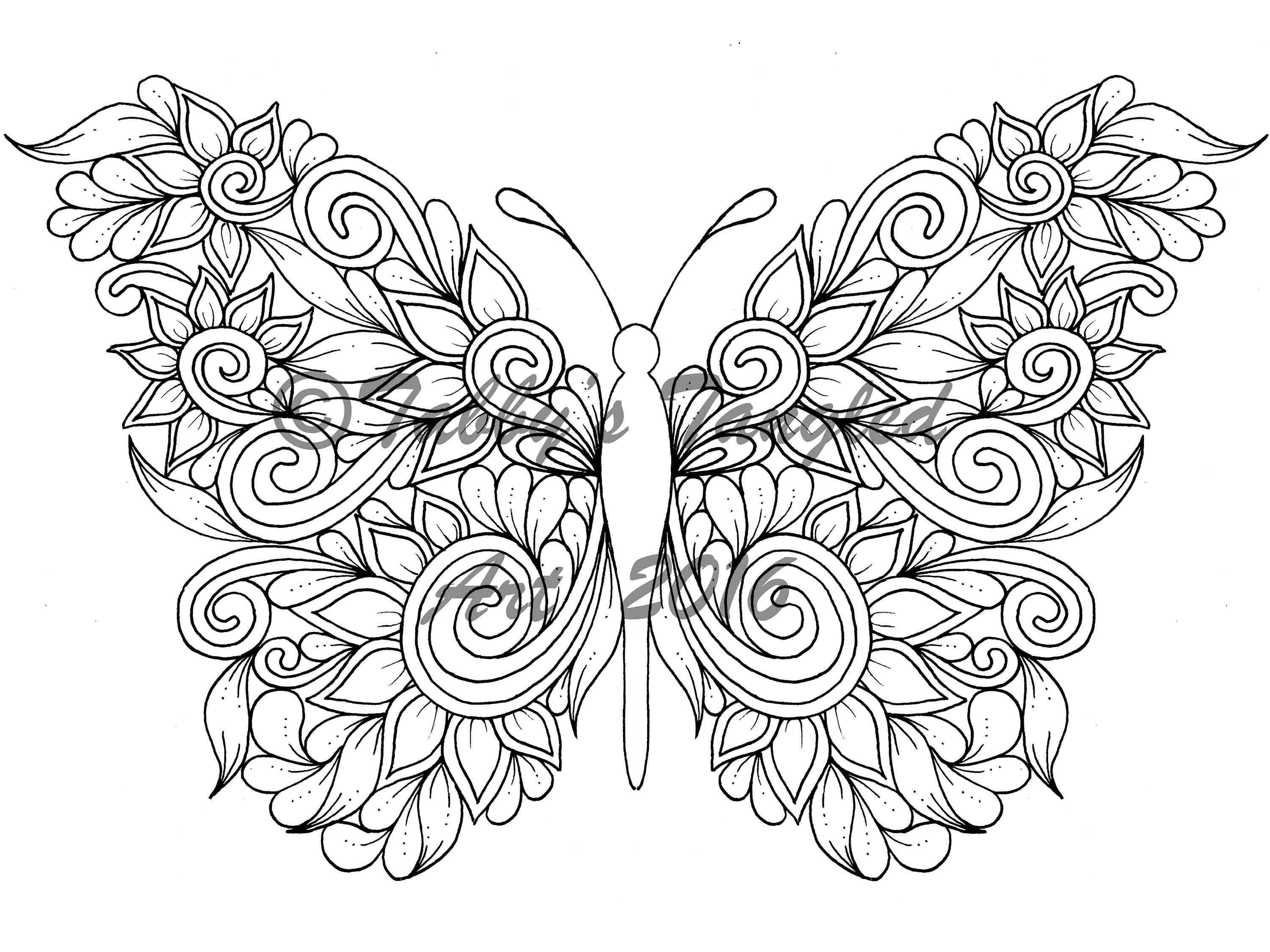 Butterfly Coloring Sheet Display