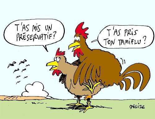 Bevorzugt Les chiens et la Grippe A Image Drôle et Humour | humour  SD15