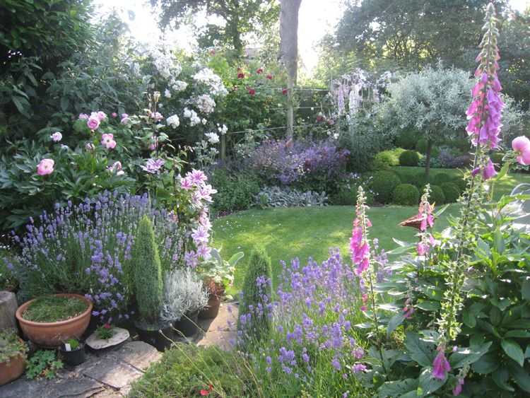 Garden Design Manchester manchester garden filled with flowers - after - caroline benedict