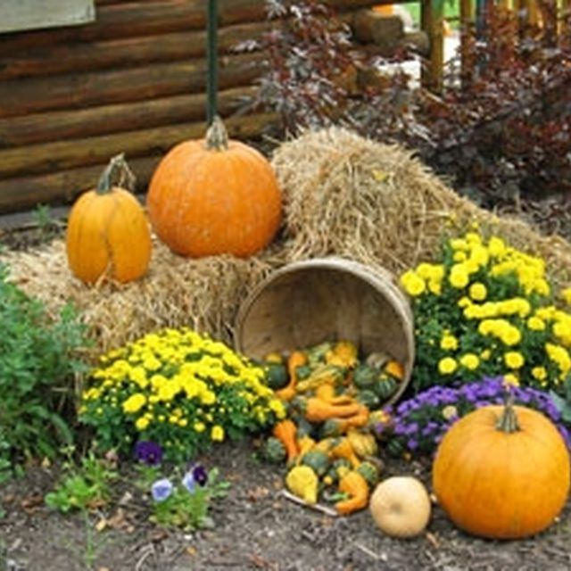 Autumn Yard Decorations: How To Decorate A Yard For A Fall Festival