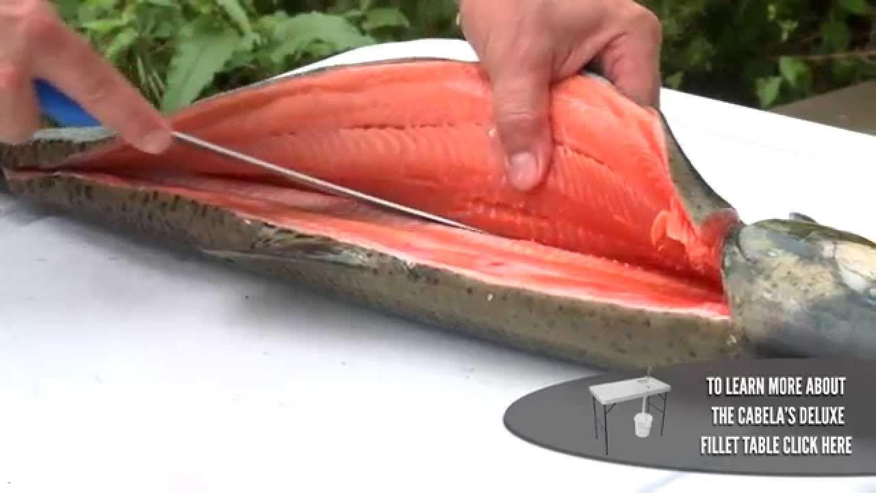 How To Filet A Salmon Salmon Bellies Salmon Filet Salmon Fish