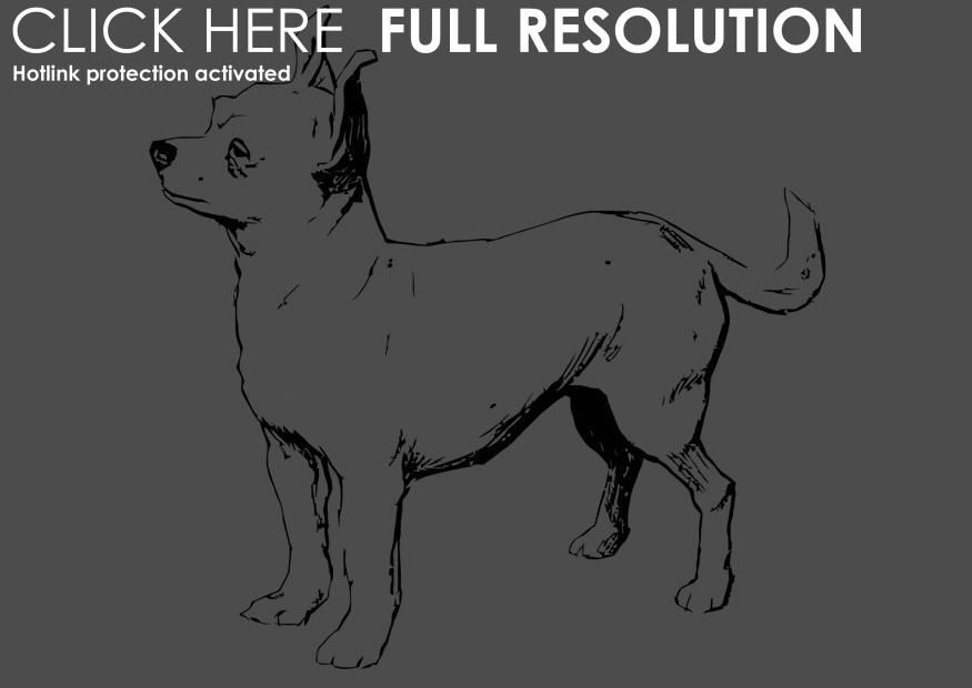 Coloring Page Dog Chihuahua Img 13704 Coloring Pages Chihuahua Dogs