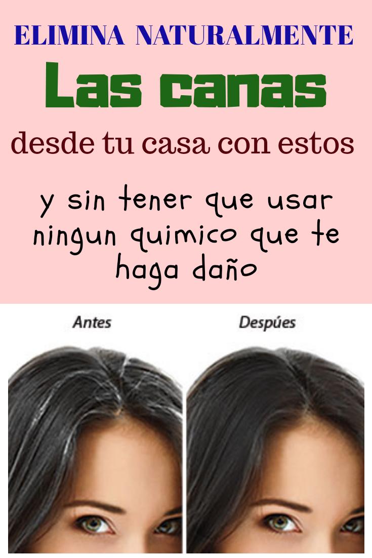 ELIMINA CANAS NATURALMENTE DESDE TU CASA Y SIN TENER QUE..