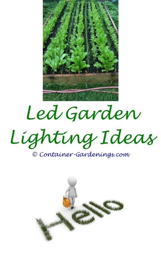 Superb Garden Sites Online | Winter Container Gardening, Asian Garden And Organic  Gardening