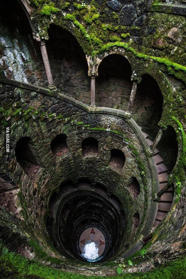 An overgrown spiral staircase