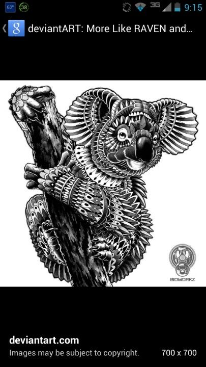 Tribal Koala Tattoo Designs Pinterest Koala Tattoo Tattoos