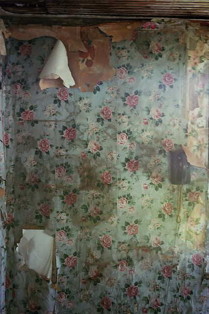 The Fading Faded Charm In A Robins Nest Cottage