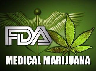 [Cannabis Sativa]