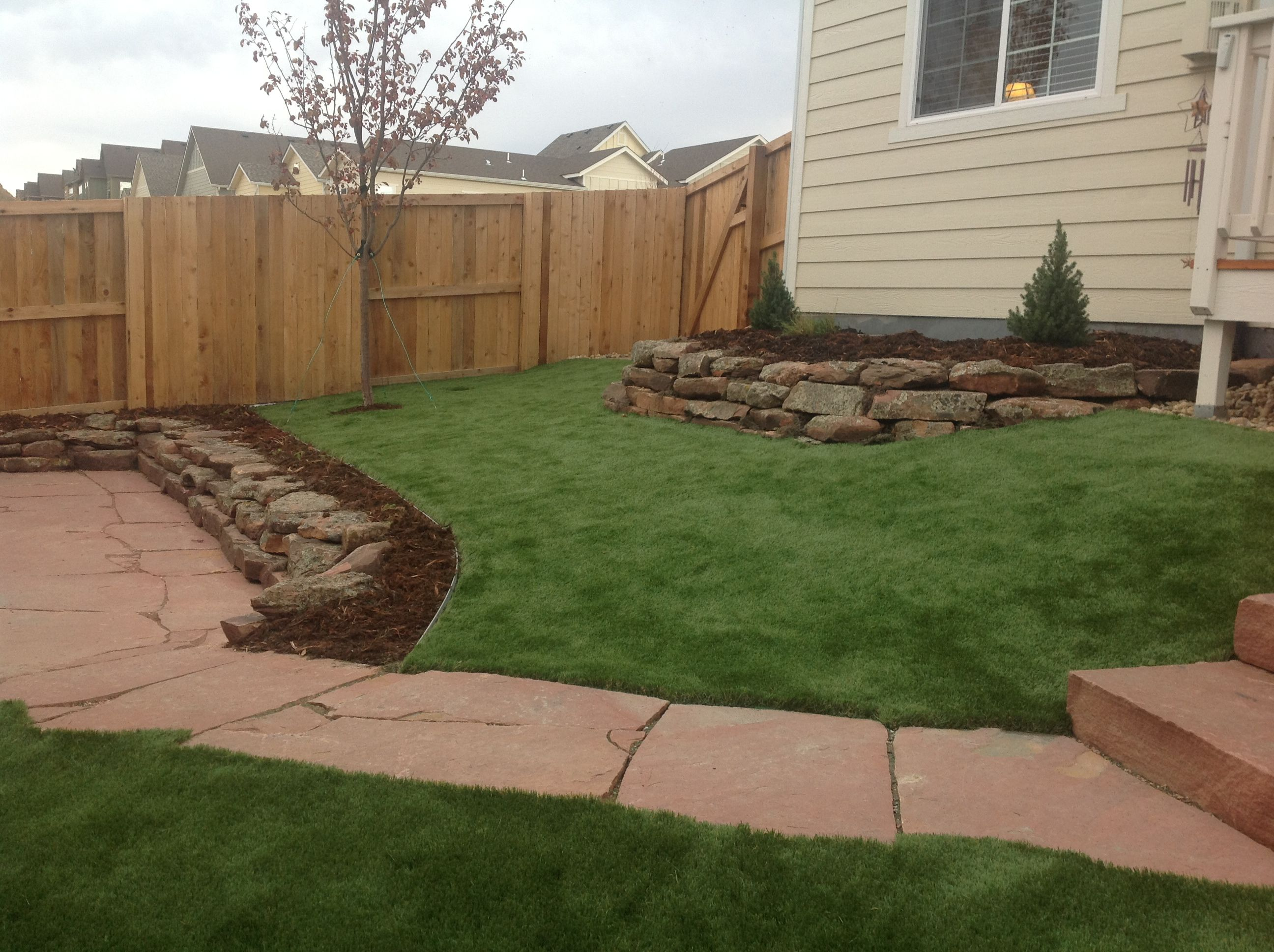 A different look and water saving possibility in Colorado ...