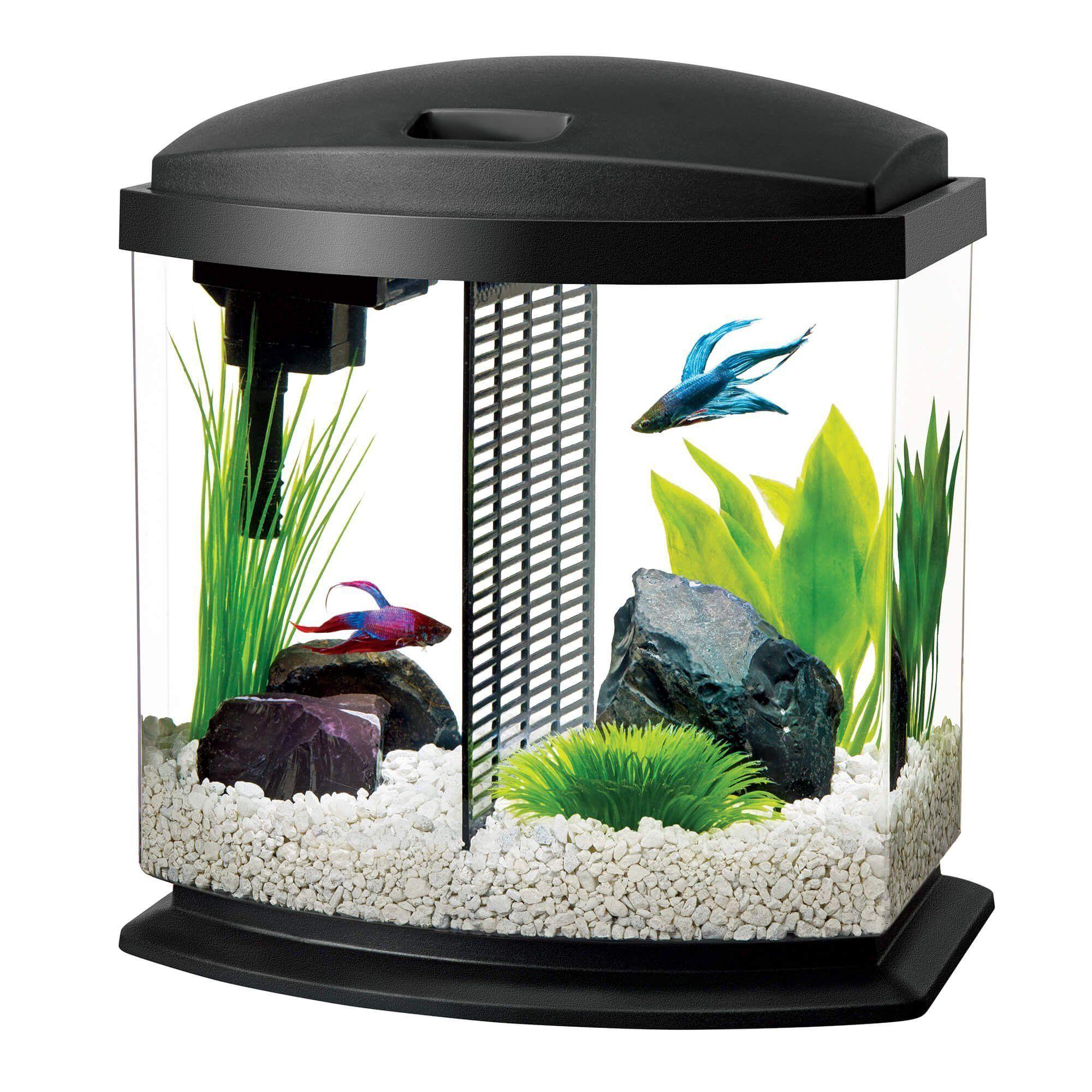 Aqueon 2 5 Gallon Bettabow Led Desktop Fish Aquarium Kit Black Petco Nano Tanks Aquarium Aqueon Bettabow Black Desktop Fish Ga Aquarium Fish Aquarium Kit Pet Fish
