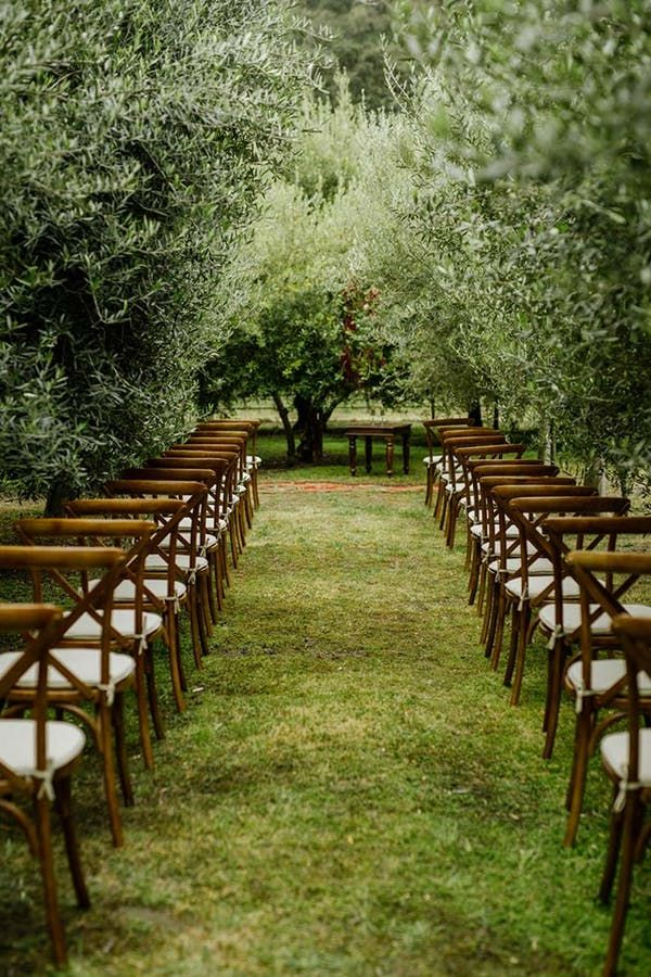 This Intimate and Affordable Vineyard Wedding Is the Stuff