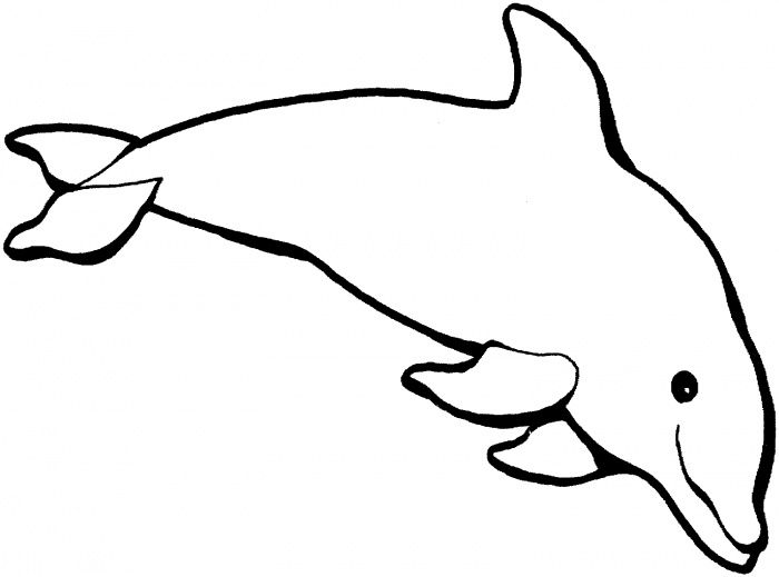 Preschool Dolphin Craft with Template Dolphin 1 coloring page