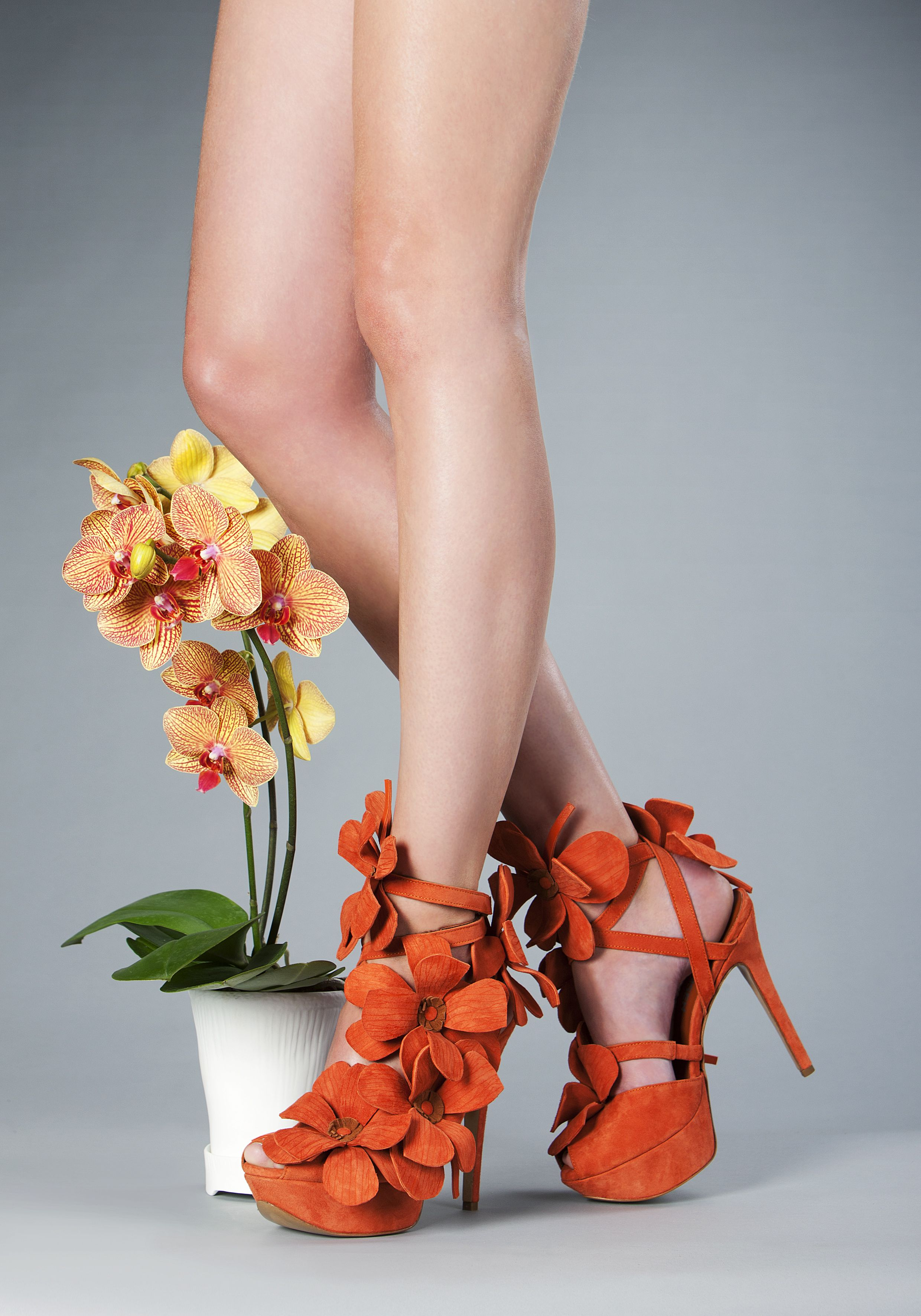 Orchid-Shoe-Terracotta.jpg 2,480×3,543 pixels