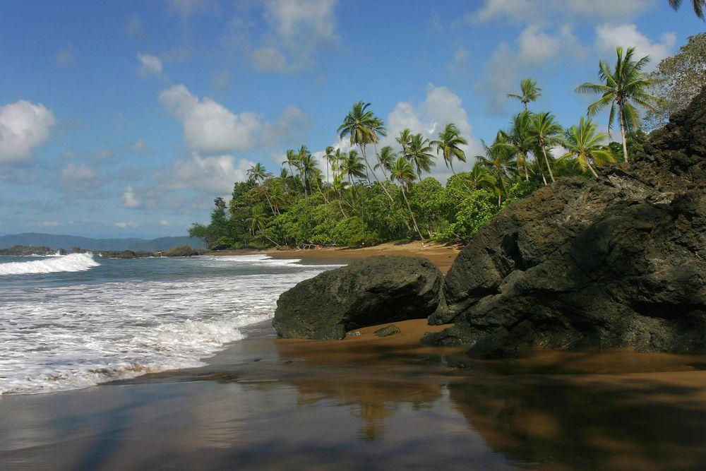 """El Parque Nacional Corcovado se encuentra al suroeste de #CostaRica. Fue creado en 1975, y comprende un área de 45,757 hectáreas terrestres y 5,375 hectáreas  marinas. National Geographic lo ha llamado """"el lugar más intenso del mundo, biológicamente hablando"""" y se estima que ningún lugar en el mundo albergua una mayor diversidad biológica. #BestDay #OjalaEstuvierasAqui"""